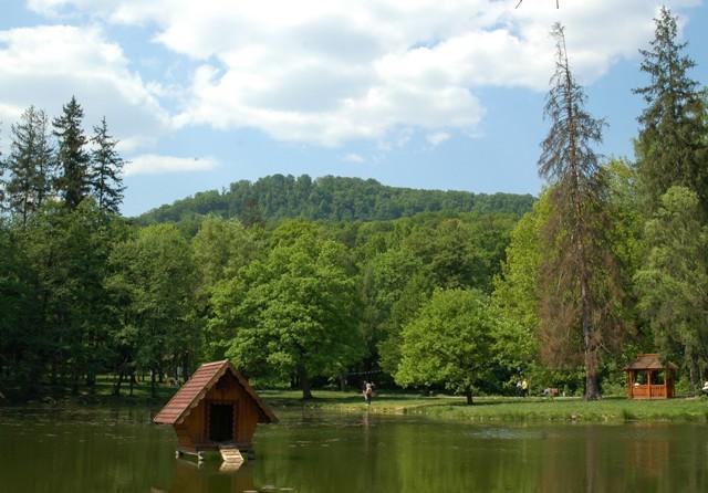 парк Шенборна