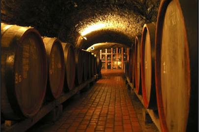 Дегустація вина – Берегово Старий підвал