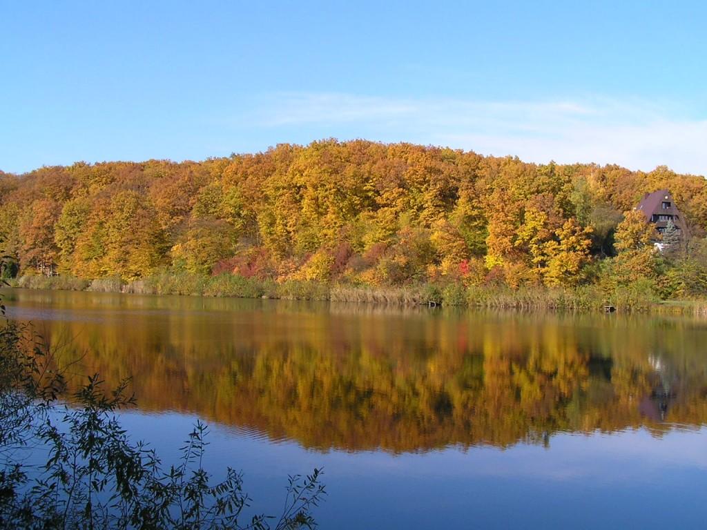 7 причин выбрать отдых в Закарпатье осенью