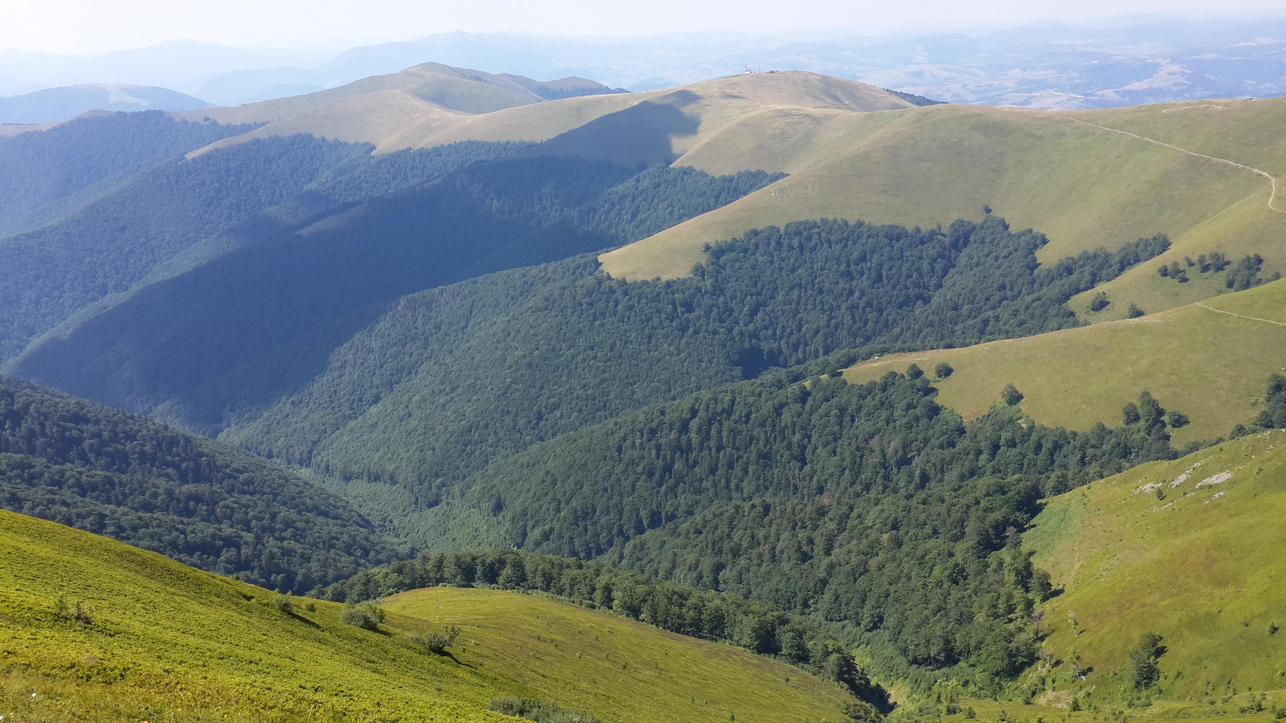 Піші походи вихідного дня, полонина Боржава – Українські Карпати