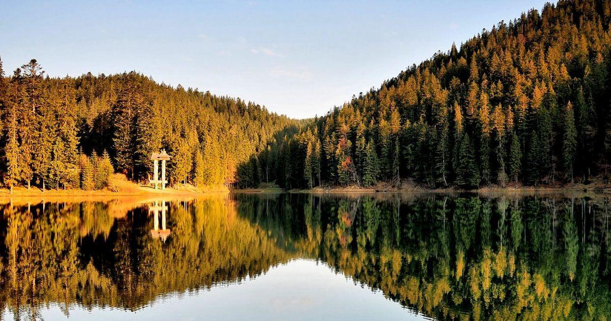 Золота осінь в Карпатах - чудовий період для спілкування з природою, це чудовий час щоб відвідати унікальні природні парки, які вже зовсім скоро будуть закриті під сніговим покровом до весни.