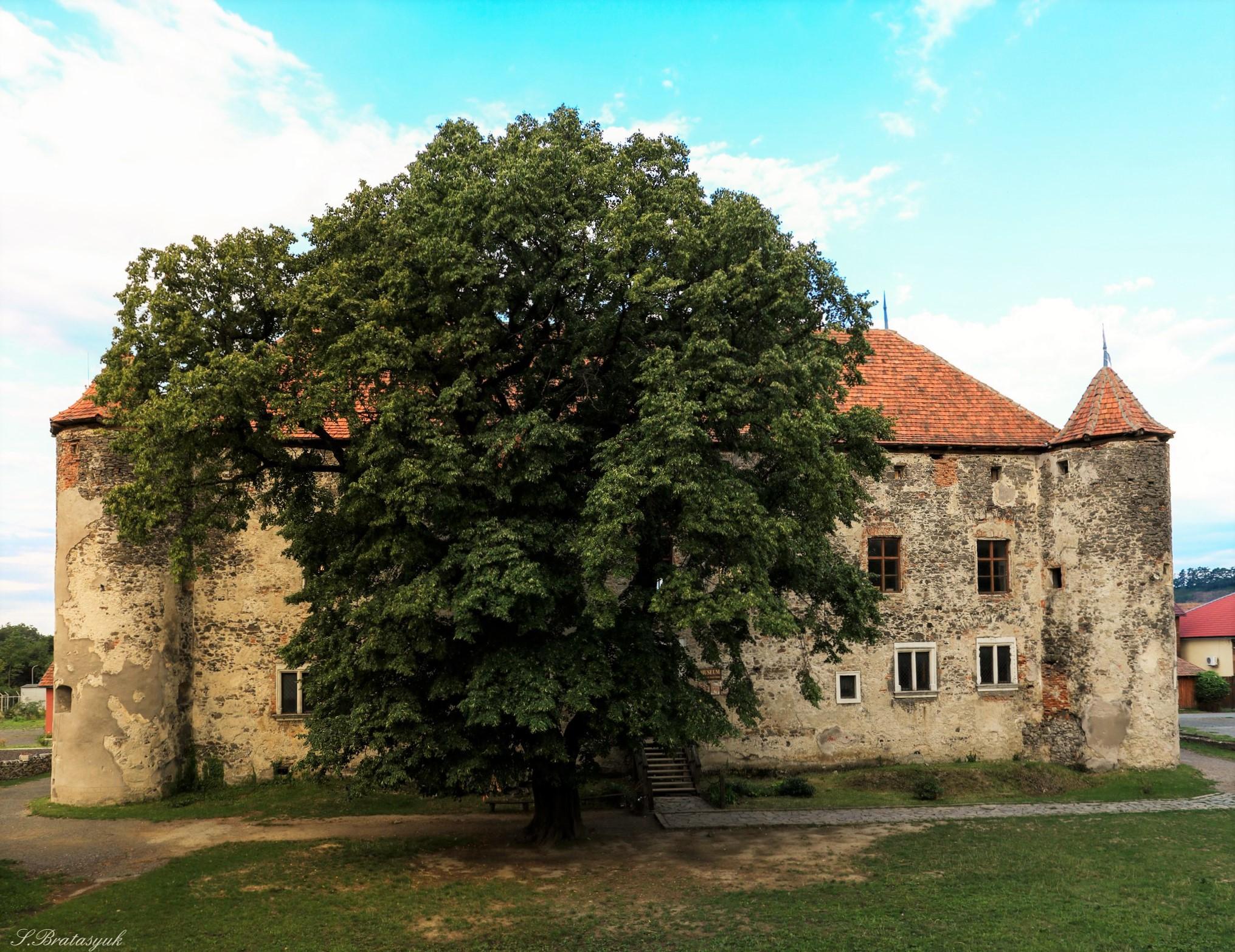 Замок Сент Міклош – ТОП 10 ідей що б гарно провести час