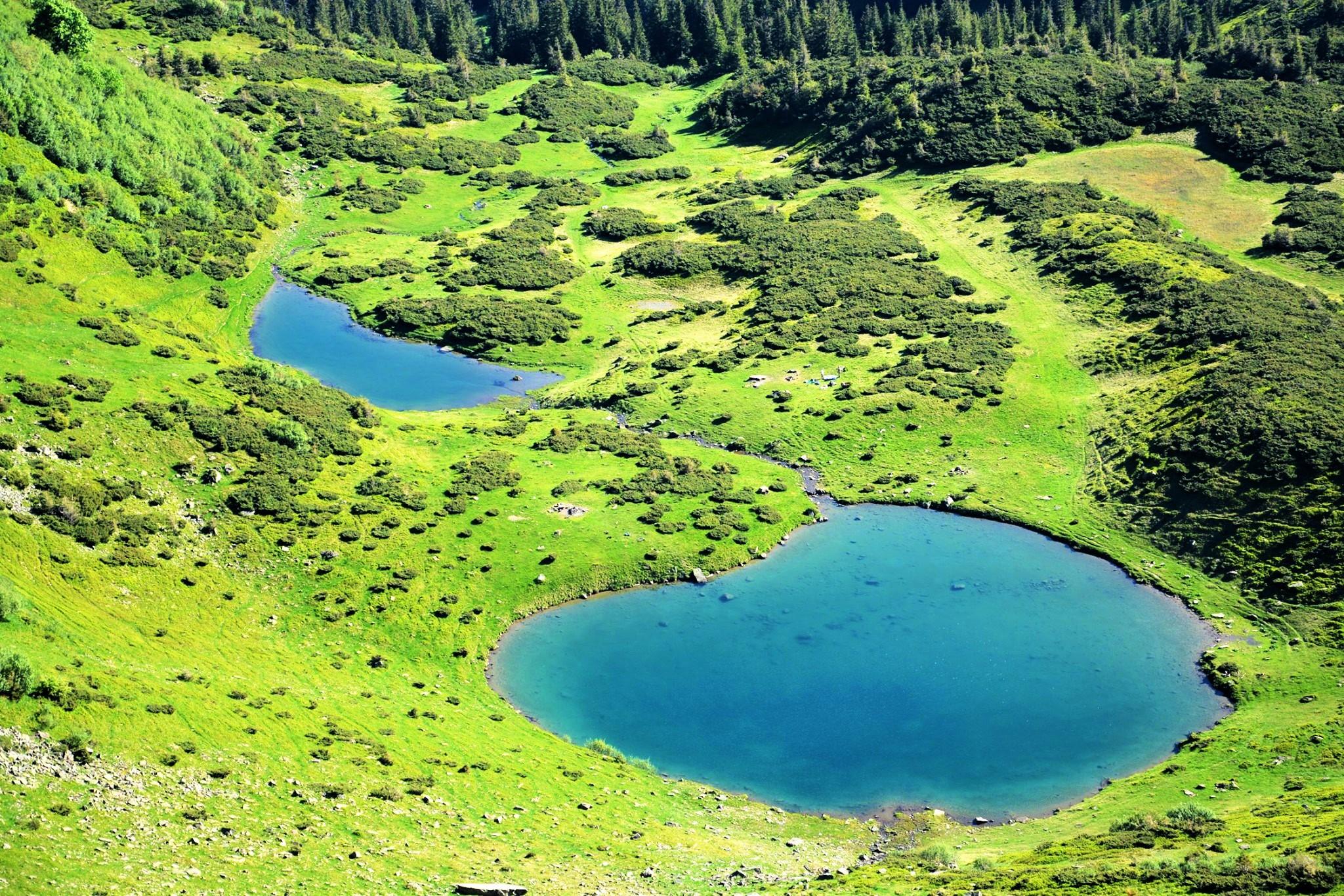Озера Карпат – Ворожеска, гірський масив Свидовець