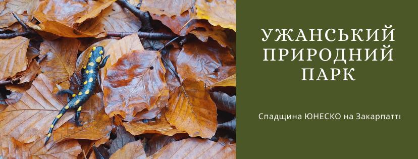 З чого починати дослідження парку, що там робити, як доїхати. Саме ці питання виникають, розглядаючи карту України. Сьогодні про Ужанський природний парк.